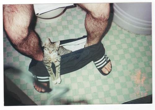 Хлопець з кішкою хлопець з їжачком