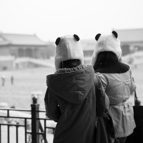 вязанная шапка панда, шапка в виде панды.  Девушки в шапках Девушка в...
